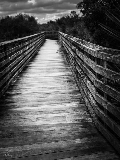 Boardwalk to....