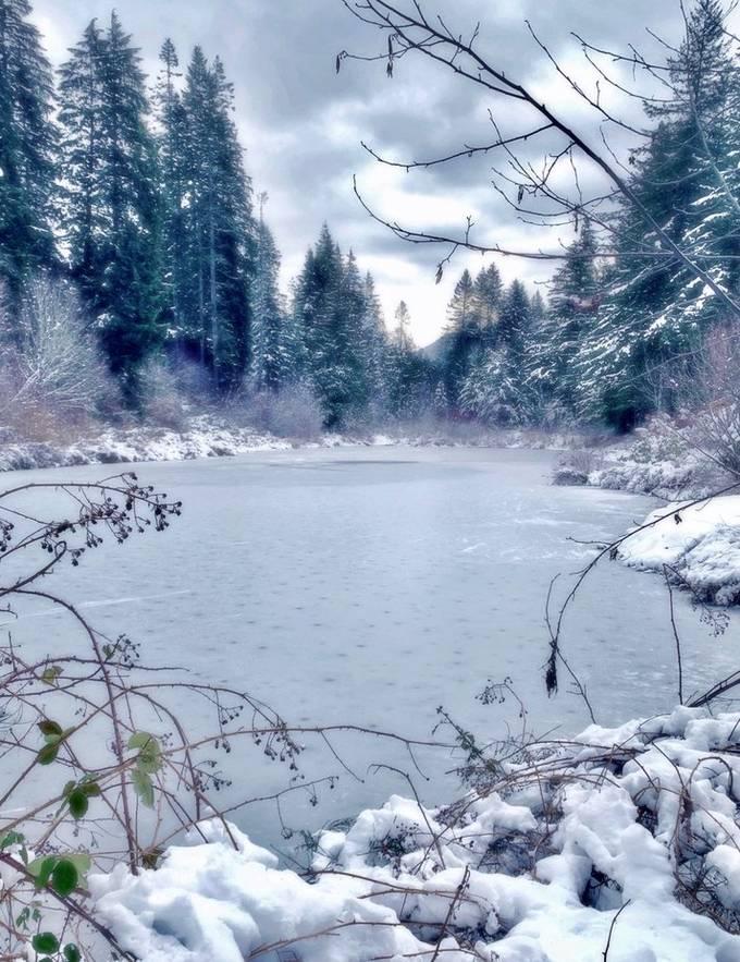Pond on ice