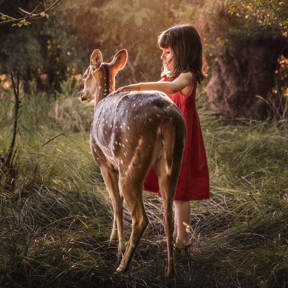 Let nature teach you stillness by amaliazilio - Social Exposure Photo Contest Vol 21