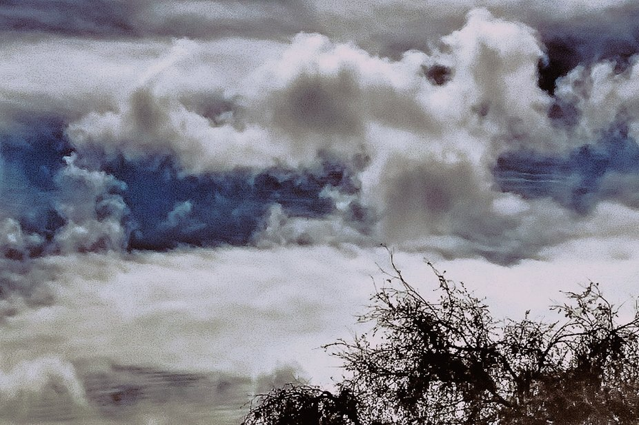 My Clouds have some interesting things going on in them...I would say its more than paradolia. Wh...