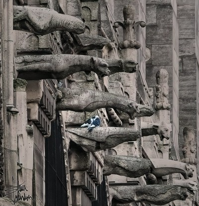 Notre Dame Pigeons