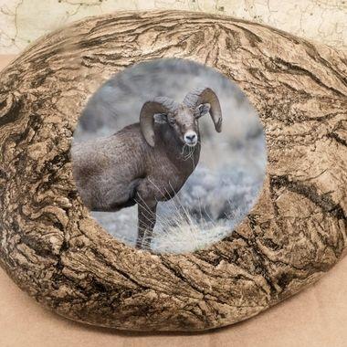 Full Curl Ram