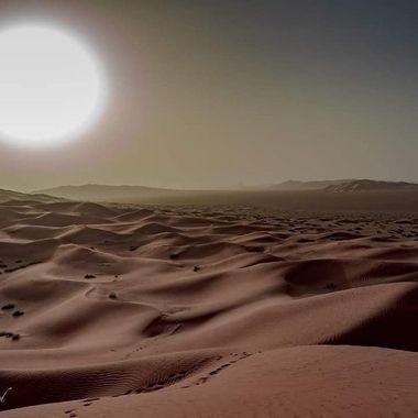 Omani dunes.