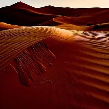 Dawn over Omani dune.