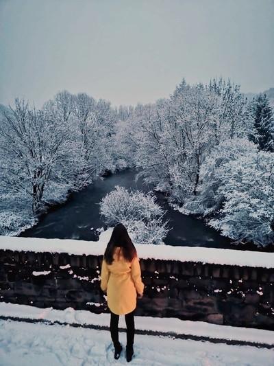 Yellow Spot in Winter Eifel