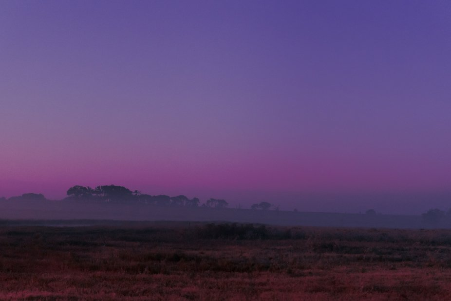 Low  lying fog early morning right before sunrise