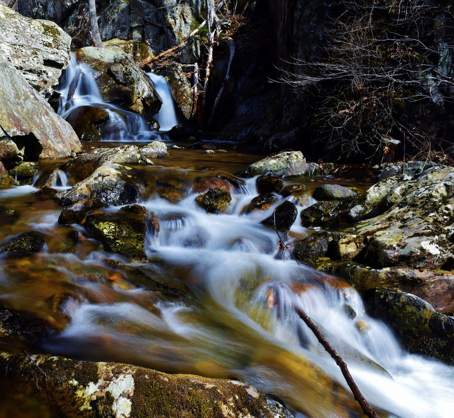 I got this shot when finally got a free weekend to take a trip out to Shenandoah National park. I...