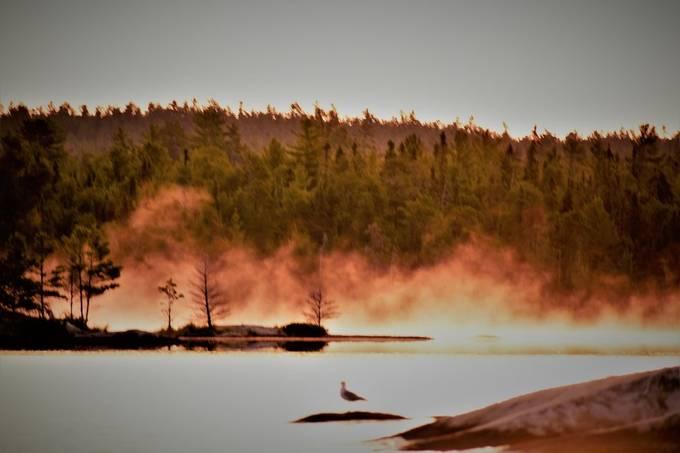 Duck bay Rainy Lake, Ontario, Canada