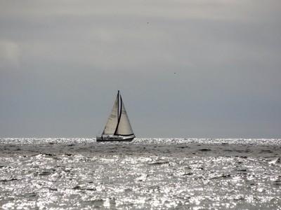 Sailing the Shining Sea