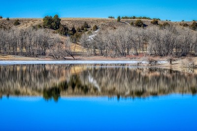 Tree Reflections On A Lake