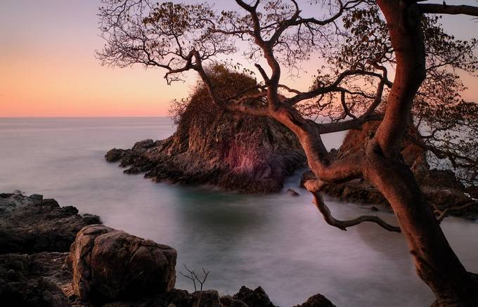 Small beach in Sayulita Mexico. It's a bit out of the village, making it less congested than the main, always packed bach. These two rocks are behind a small hill that hides even smaller beach and this beautiful tree.