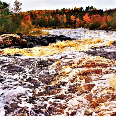 Beautiful fall stop on the way south from Int'l Falls down Highway 71. High water