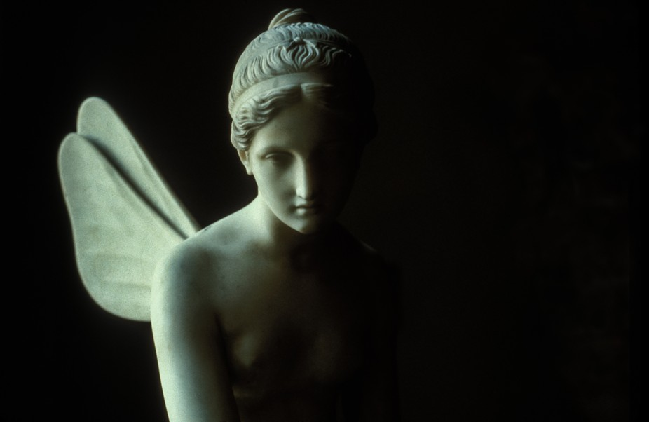 Image taken in 2005 when the statue was still in the Uffizi Museum. Now it is across the river in...
