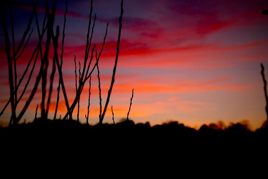Northampton @ dusk