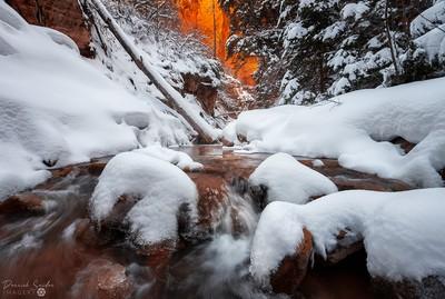 Winter Qiesence