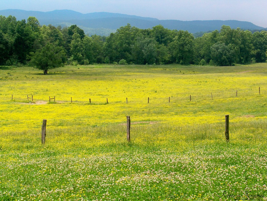 Cades Cove, located in the Great Smoky Mountains National Park, provides a view into the past wit...