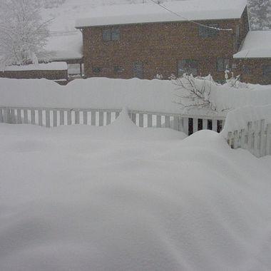 2003 CO Blizzard