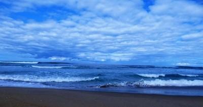 Blue Pacific  P1090028 (2)