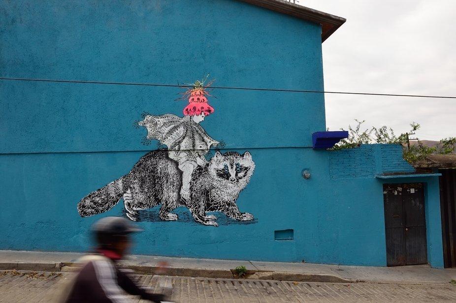 Oaxaca 2015 graffitti. Doublesight