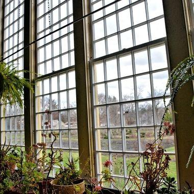 Zoar Greenhouse window