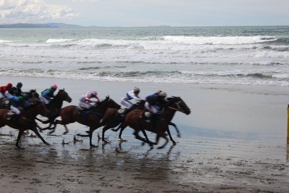 Castlepoint Races 3