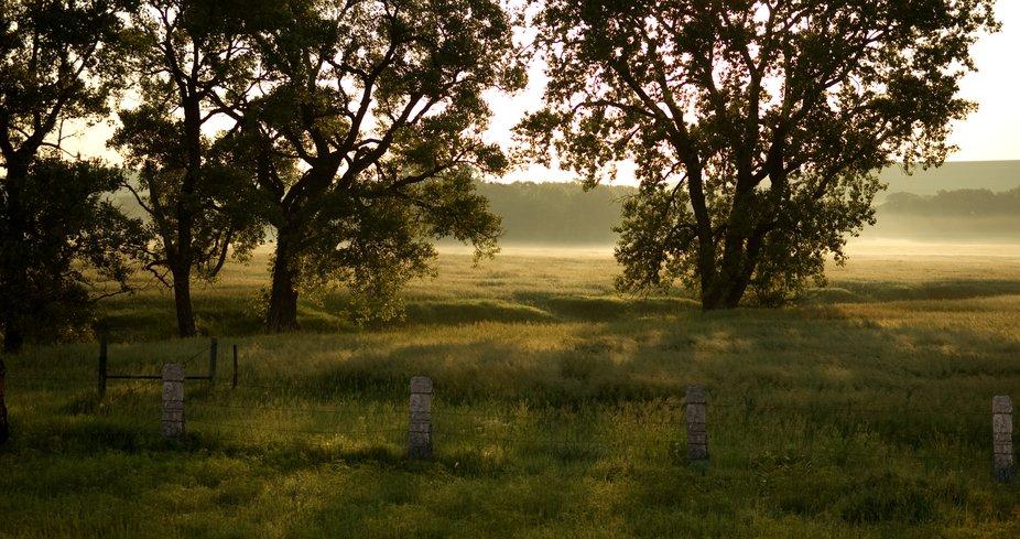 Morning-Fog-on-Fox-Creek-Meadow