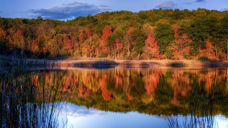 A beautiful fall day on a quiet pond ... and a mirror image.