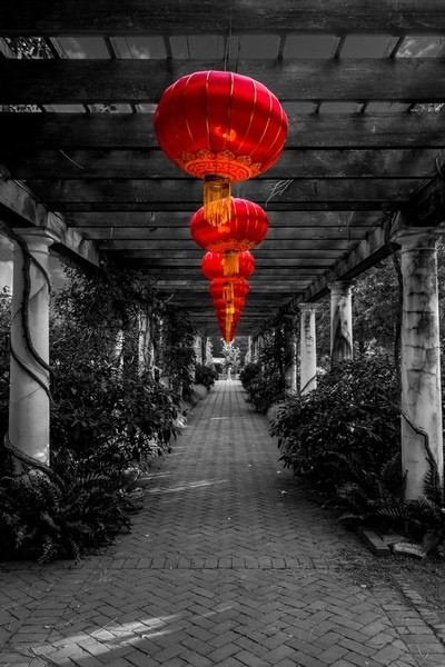 Along the Red Path