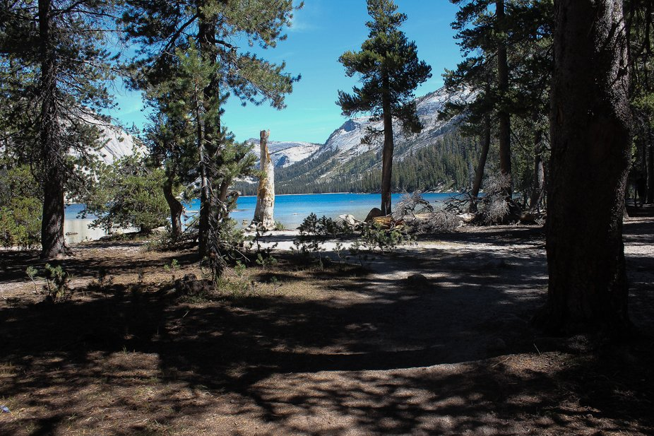Traversing the wilderness and stumbled upon a great photo opportunity at Tenaya Lake