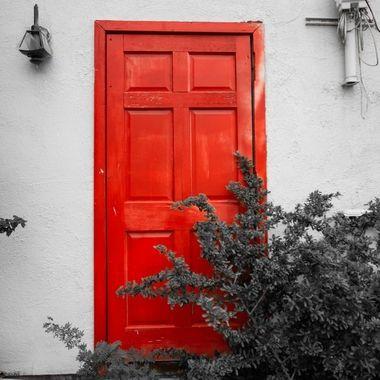 Red Door - Tucson, AZ