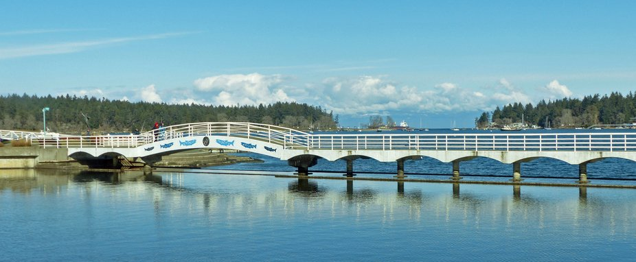 Maffeo sutton park  bridge