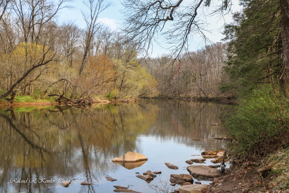 Spring along the Neshaminy Creek