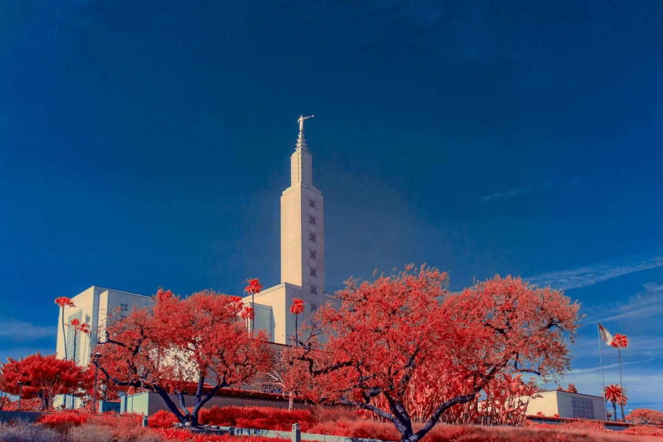 Shot using a full spectrum converted camera and 590nm Infrared filter. Revenue red and blue channel in Photoshop and some fine tuning of 5he color. The building belongs to the Church of Jesus Christ of Latter Day Saints.