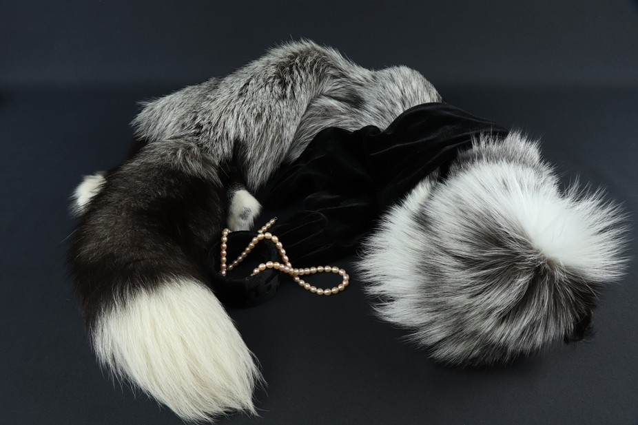 Women's accessories. Cape-boa from natural fur silvery black Fox cell breeding, bracelet...