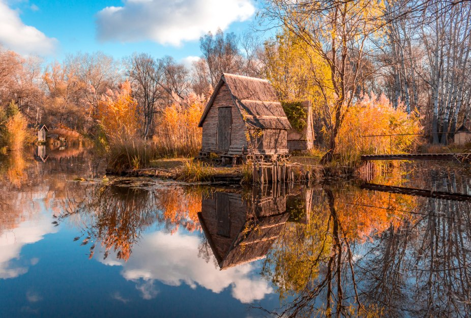 Budapest, Hungary - Beautiful autumn forest with foliage in Hungarian woods at Szodliget
