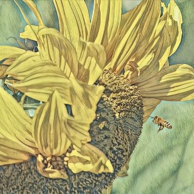 Painted sunflower and bee in Van Gough style