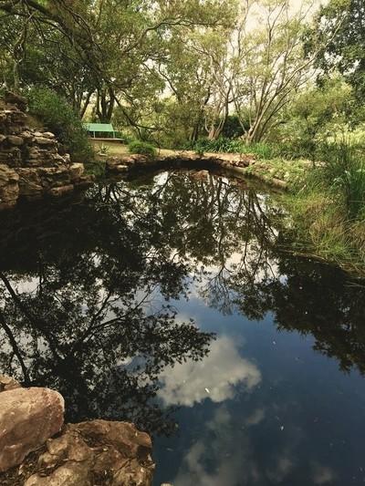 WEST WILDS  - BUSHWILLOW POND