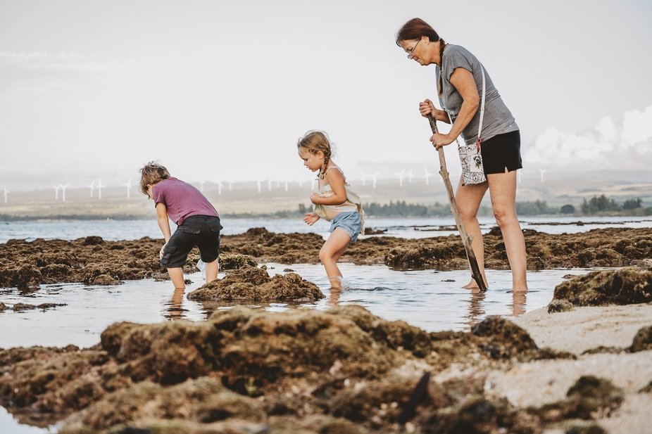 Family walk discovering the underwater world in Hawaii. Oahu Tide Pools make for the perfect adve...