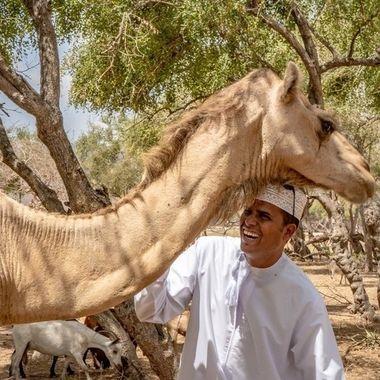Camel fun.