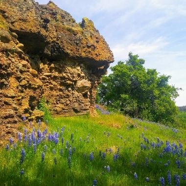 Spring on an old volcano