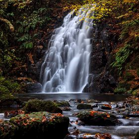 Autumn at the waterfall in Gleno, County Antrim.