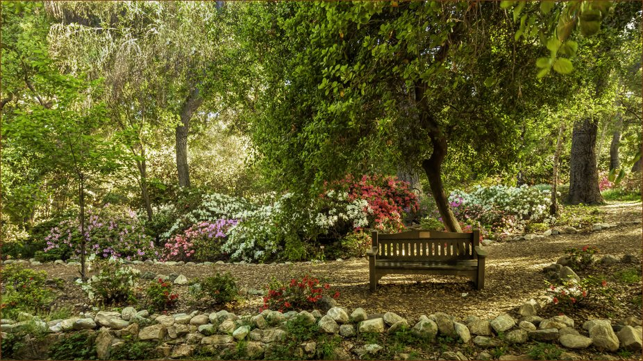 colors, nature, trees, bench, flowers, rocks, path, Descanso Gardens, botanicals, objects,