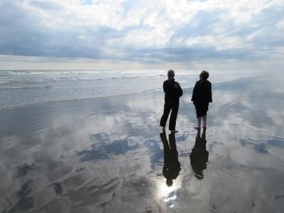 Walkers in Reflection