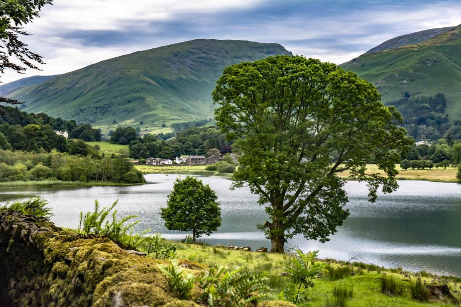 On holiday in 2017 in the Lake District National Park, UK, we were walking from Rydal to the vill...