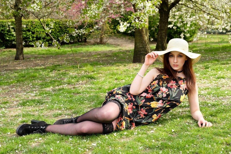 Blossom trees in Battersea Park