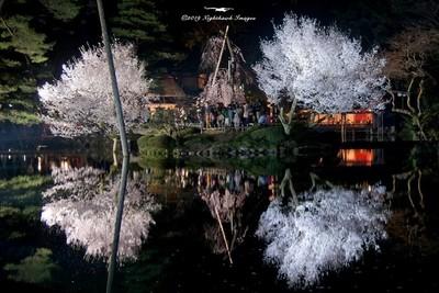 Kenrokuen at Night