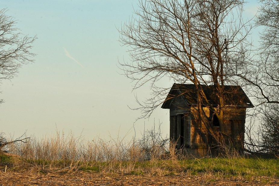 A shack on a field