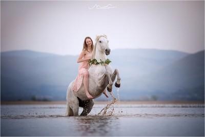 """""""Water Dancers"""""""
