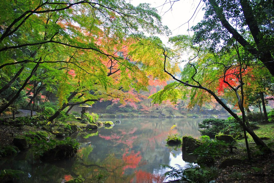 成田山新勝寺 Naritasan Shinshoji Temple