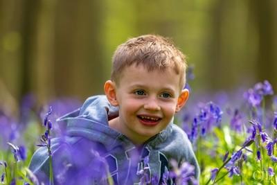 My Blue Eyed Boy, Amongst The Bluebells